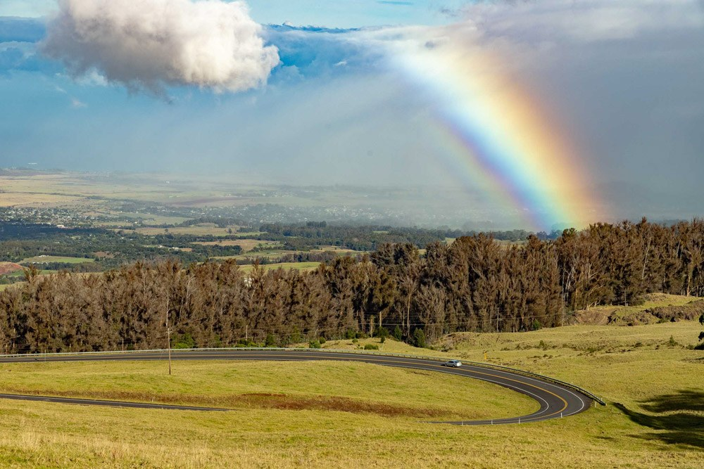 Crater road and rainbow upcountry maui